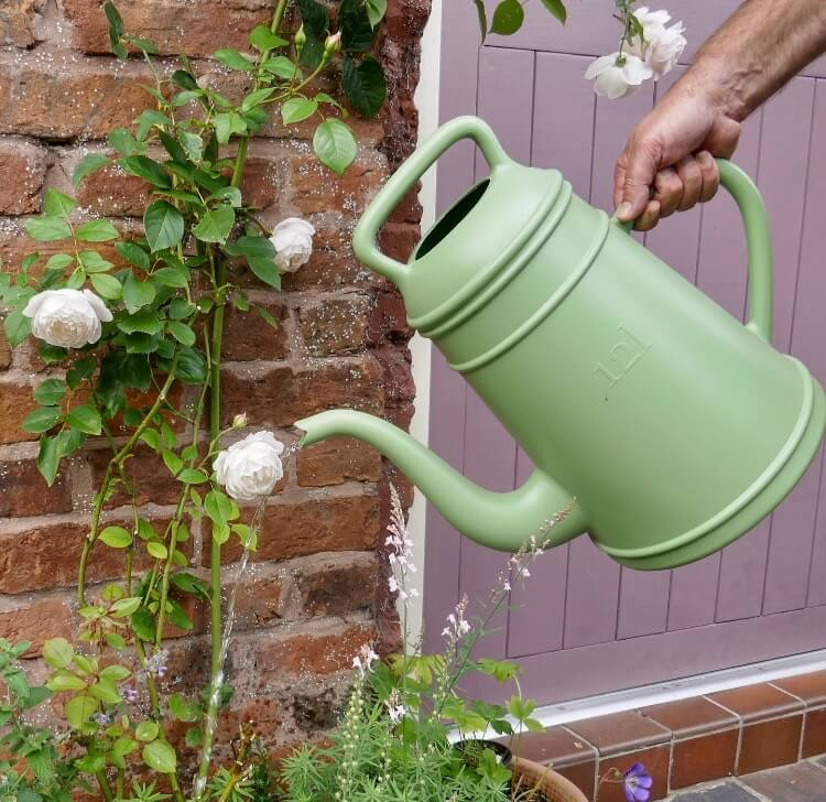 Coffee Pot Watering Can