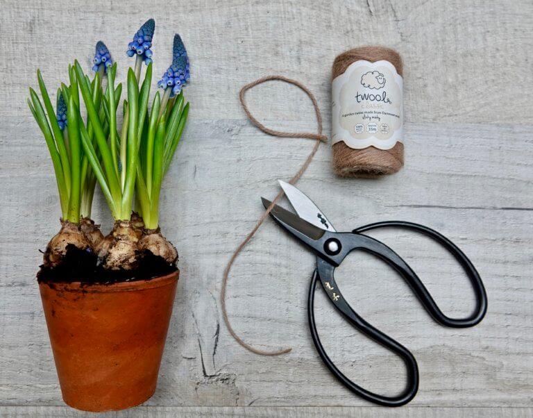 Niwaki Sentei Garden Scissors & Twool Garden Twine Gift Set