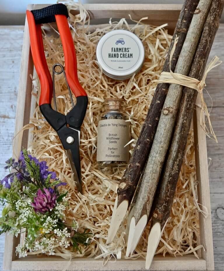 Wildflower Seed - Garden Gift Set