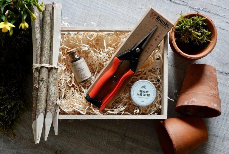 Wildflower Seed Garden Gift Set